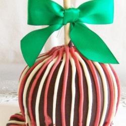 Gourmet Apple Christmas Winter Theme