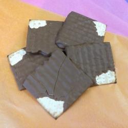 Gourmet Chocolate Passover Matzoh Milk